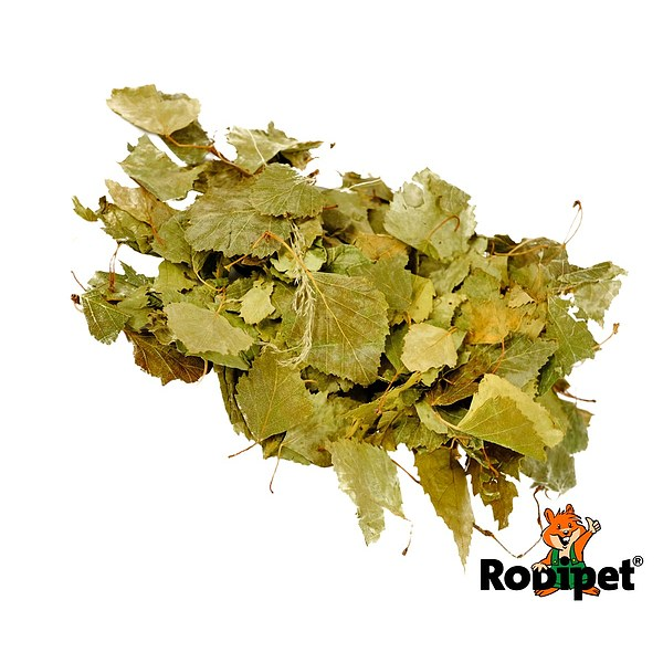Rodipet® Nature's Treasures Birch Leaves 60g