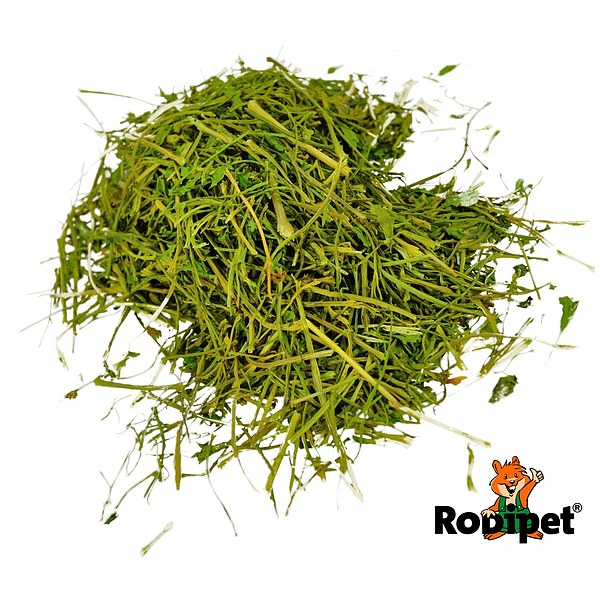 Rodipet® Nature's Treasures Parsley Stems 150g