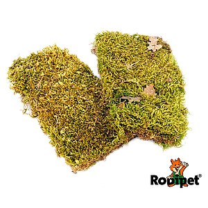 Rodipet® Plates of Moss – 2 Plates, 10 x 18 cm each