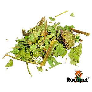 Rodipet® Nature's Treasures Echinacea 150g