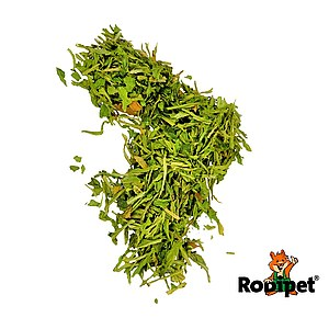 Rodipet® Nature's Treasures Spinach Leaves 150g