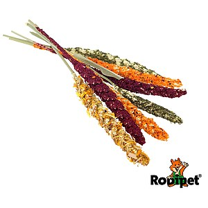 Rodipet® Week of Colours